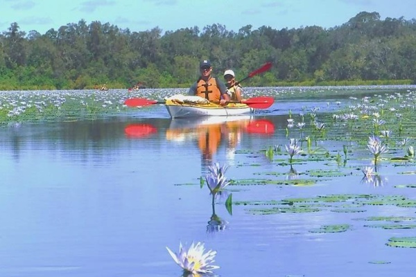 Kayak Everglades